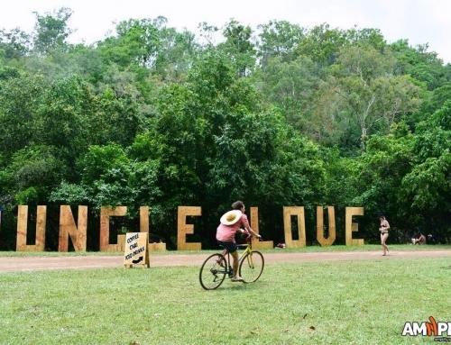 Jungle Love Music & Arts Festival Album 2